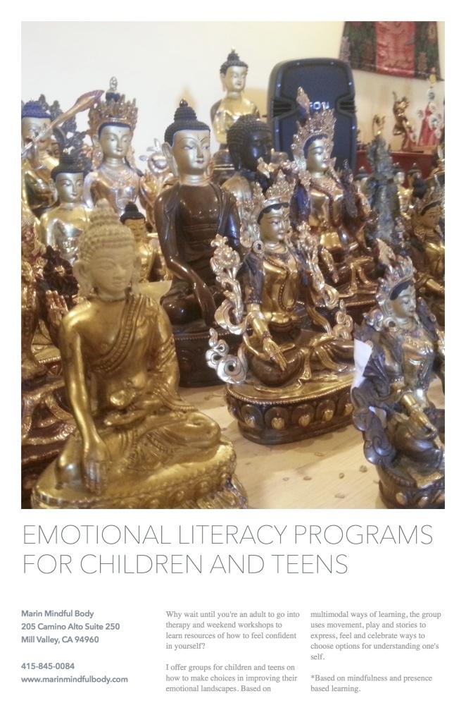 emotional literacy program